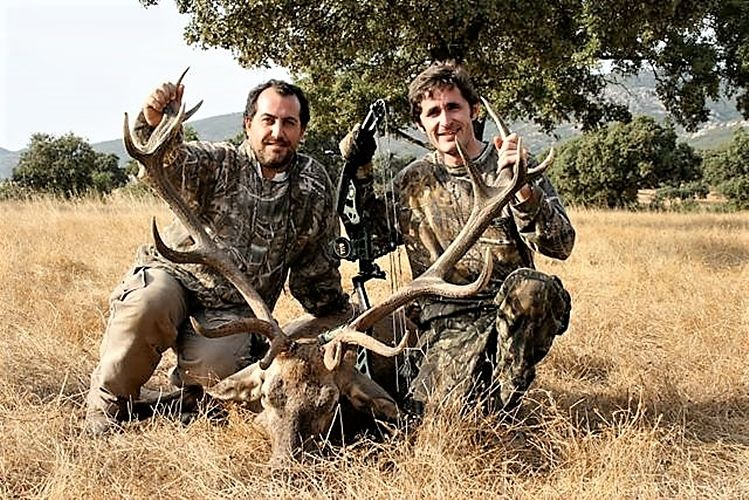 Iberian Mouflons and Pure Iberian Red Deers. Spain. Los Claros.